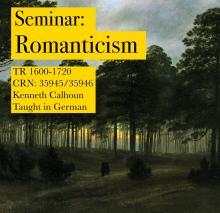 GER 407/507 Seminar: Romanticism 2